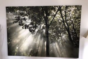 Large Photo for Sale in Chicago, IL