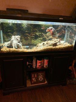 75 Gallon Fish Tank for Sale in Blanchard,  OK
