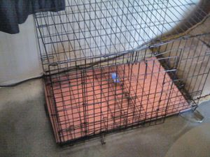 Dog kennel for Sale in Albuquerque, NM