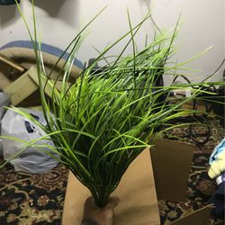 Fake Plants Or Grass Set Of Three One Dollar Each for Sale in Tallahassee,  FL