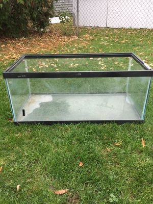 Approximately 40 gallon fish tank for Sale in Eastpointe, MI