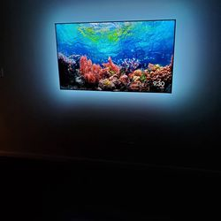 Quality Tech Solutions Here To Service To Your TV Mounting Needs. We Mount Any Size On Tilted Or Full Motion Mounts With Led Lights. for Sale in Houston,  TX