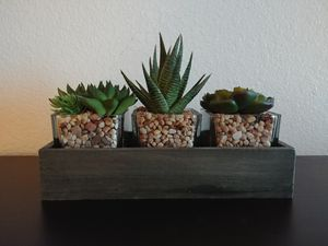 Faux 3 succulent desk decoration for Sale in Seattle, WA