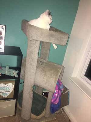 Cat tree for Sale in Germantown, MD