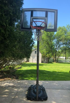 Lifetime World Class Outdoor Basketball Hoop for Sale in Grosse Ile Township, MI