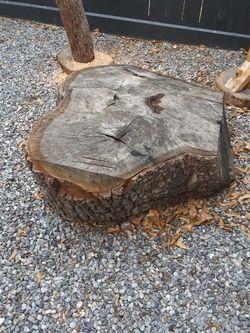 Oak Tree Sections -FREE for Sale in Houston,  TX