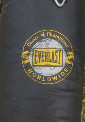 54 LB small Everlast Punching Bag for Sale in Garland, TX