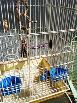 IRON BIRD CAGE 27 IN TALL for Sale in Fort Worth,  TX