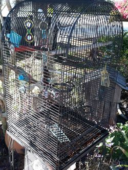 Bird Cage for Sale in Groveland,  FL
