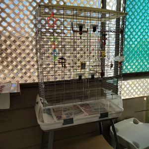 Bird Cage With Stand for Sale in Roosevelt, AZ