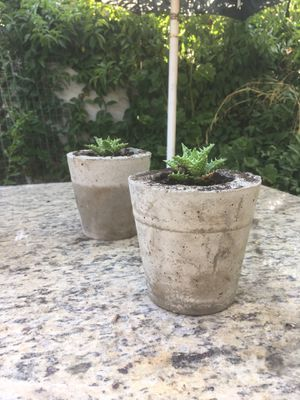 HandMade Concrete Pots W/ plant! for Sale in El Monte, CA
