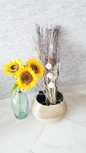 2 Decorative Flowers for Sale in Miami, FL
