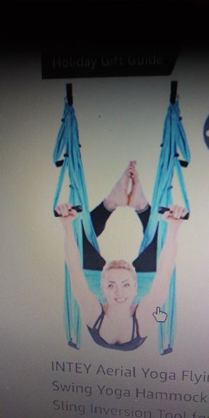 Aerial trapeze for Sale in Lutz, FL