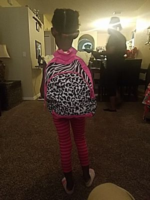 A pink and zebra backpack for Sale in Valrico, FL