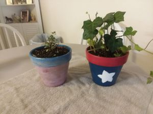 Hand painted pots for Sale in Newark, OH