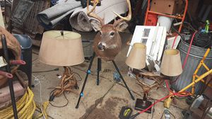 Buck trophy and really nice antler lamps with real hide for Sale in Whitehall, OH