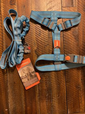 Harness and leash set in blue for Sale in Yorba Linda, CA