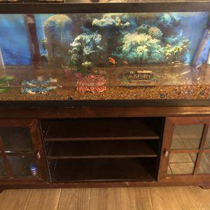 Fish Aquarium Tank for Sale in Richmond, TX