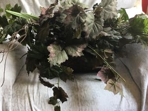 Fake grape plant for Sale in Colorado Springs, CO