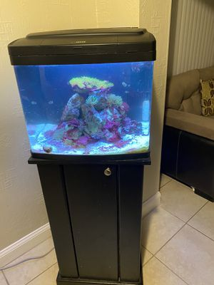 "29"" Live Biocube Saltwater Fish Tank for Sale in Fort Lauderdale, FL"