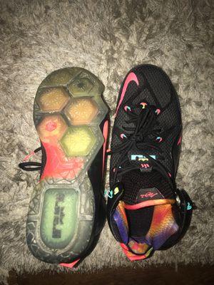 Nike, Lebron, 10 1/2 for Sale in Greenwood, DE