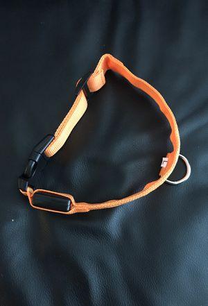 Dog collar for Sale in Salem, VA