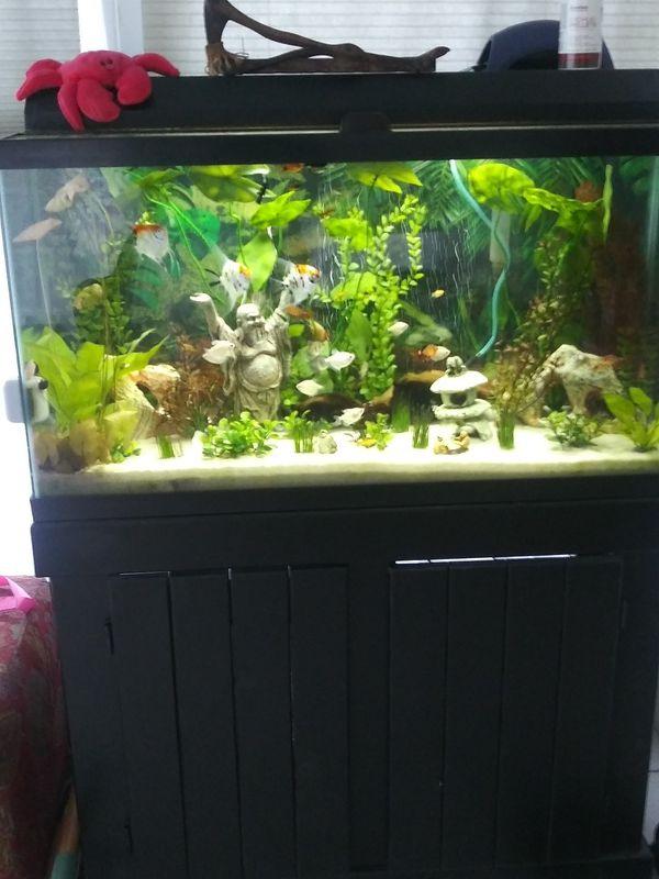 Fish tank /Aquarium 40 g