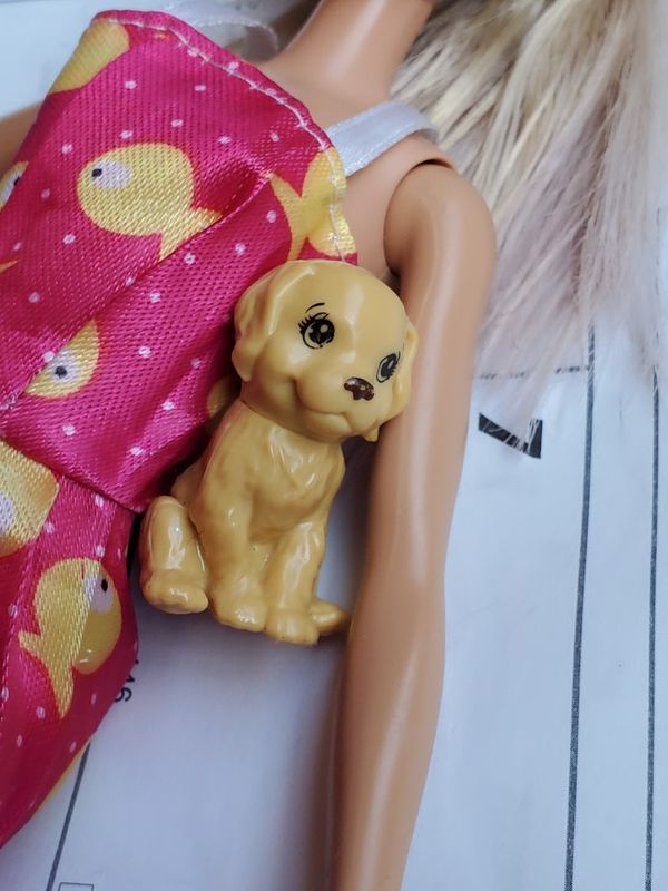 Barbie doll with a dog