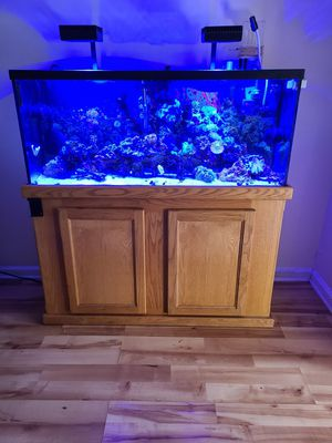 55 gallon fish tank for Sale in Raleigh, NC