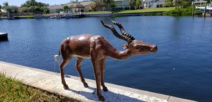 Kudu Antelope Africa African for Sale in New Port Richey, FL
