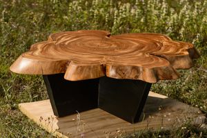 Elm Coffee Table for Sale in Traverse City, MI