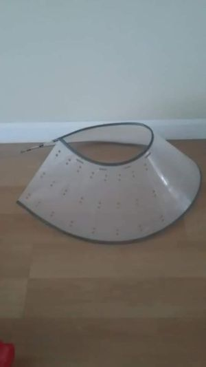 Adjustable Dog Cone for Sale in Falls Church, VA
