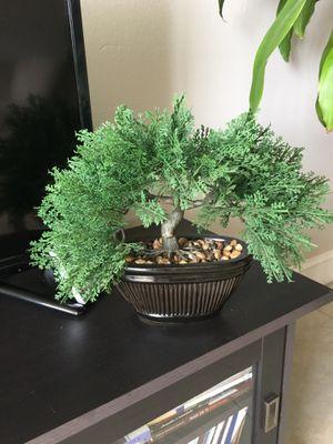 Artificial Bonsai for Sale in Deerfield Beach, FL