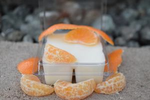 Sweet Orange Wax Melt for Sale in Arroyo Grande, CA