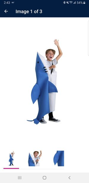 Halloween costume for Sale in Lynn, MA