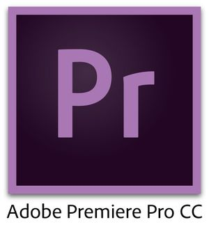 Adobe Premiere Pro 2020 Windows for Sale in Chicago, IL