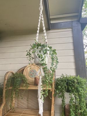 Boho Coastal White Braided Wood Beads Macrame Pot Flower Garden Plant Holder Hanger for Sale in Eugene, OR
