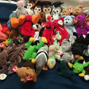 Beanie Babies for Sale in Thonotosassa, FL