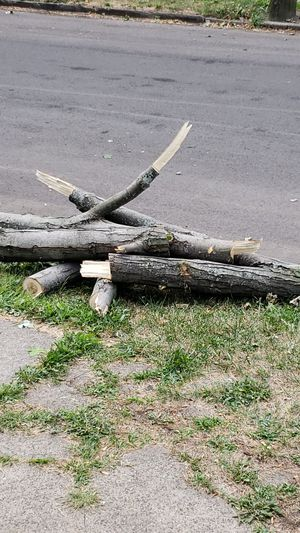 Wood for free for Sale in Northwood, OH