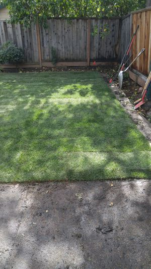 Sod & sprinkler installations for Sale in Modesto, CA