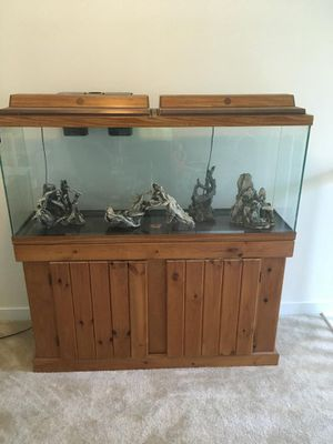 55 Gallon Aquarium and Stand for Sale in Richmond, VA