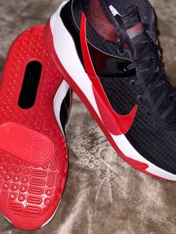 KD 13 Bred for Sale in Woodburn,  OR