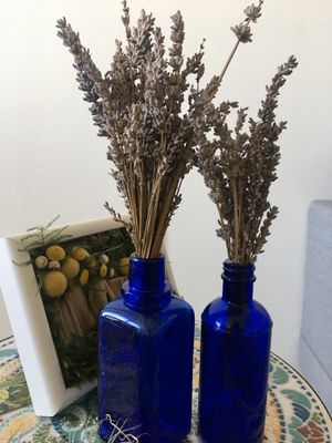 Antique Medicine bottles with dried lavender for Sale in Silver Spring, MD