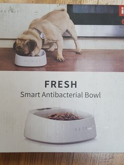 Pet Bowl for Sale in Madera,  CA