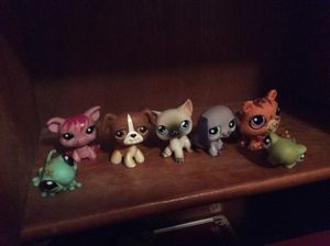 LPS , littlest pet shop toys , they are the old Version, you can get them all to gather or sold separately there are eight different figures here are for Sale in Cibecue, AZ