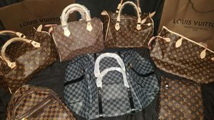 Brand new Louis Vuitton purse/bags for Sale in Roselle, IL