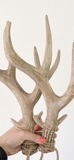 Decor Antlers for Sale in Vancouver,  WA