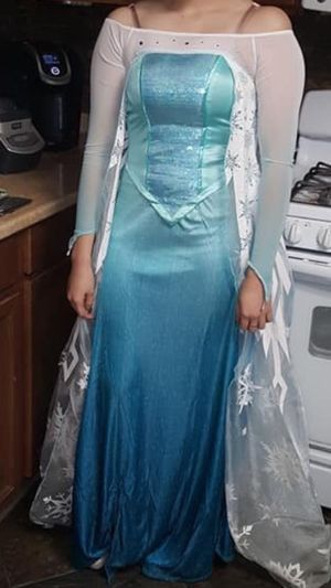 Frozen Elsa dress adult size for Sale in Desert Hot Springs, CA