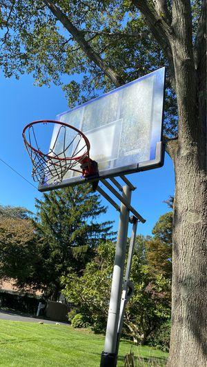 Lifetime Basketball Hoop for Sale in Huntington, NY