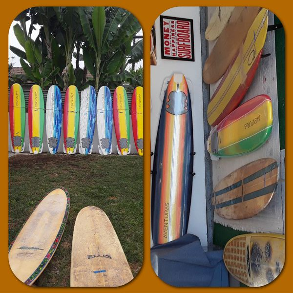 Many colors and styles surfboards and paddle boards